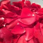 薔薇jamの作り方